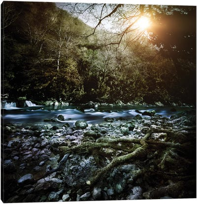 A River In A Forest At Sunset, Ritsa Nature Reserve, Abkhazia, Georgia. Canvas Art Print
