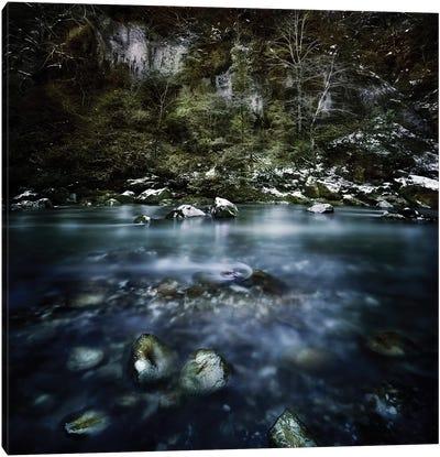 A River In A Forest, Ritsa Nature Reserve, Abkhazia, Georgia. Canvas Art Print