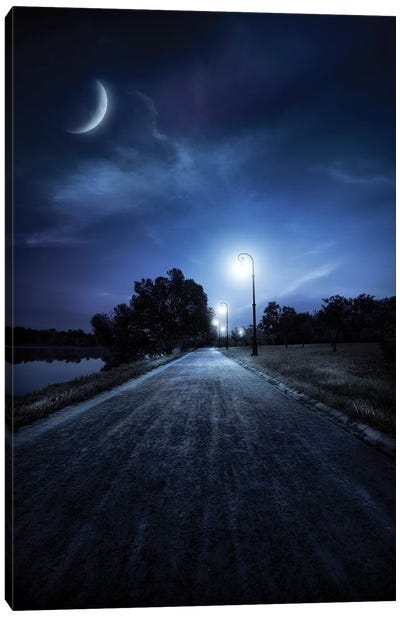 A Road In A Park At Night Against Moon And Moody Sky, Moscow, Russia. Canvas Art Print