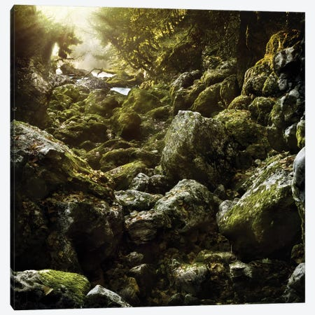 Aged Boulders Covered With Moss In A Misty Forest, Ritsa Nature Reserve. Canvas Print #TRK2413} by Evgeny Kuklev Canvas Print