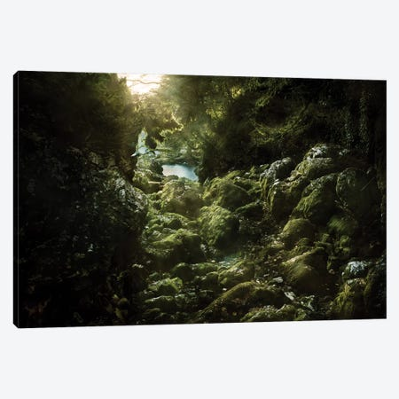Aged Boulders Covered With Moss In The Ritsa Nature Reserve. Abkhazia. Canvas Print #TRK2415} by Evgeny Kuklev Canvas Artwork
