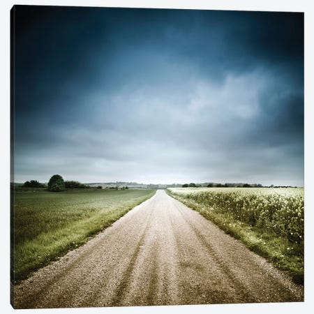 Country Road Through Fields, Denmark. 3-Piece Canvas #TRK2434} by Evgeny Kuklev Canvas Artwork