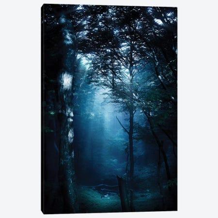 Misty Rays In A Dark Forest, Liselund Slotspark, Denmark. Canvas Print #TRK2464} by Evgeny Kuklev Canvas Print