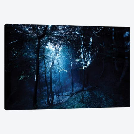 Misty Rays In A Dark Forest, Liselund Slotspark, Denmark. Canvas Print #TRK2465} by Evgeny Kuklev Canvas Print