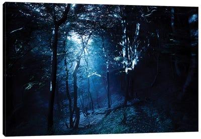 Misty Rays In A Dark Forest, Liselund Slotspark, Denmark. Canvas Art Print