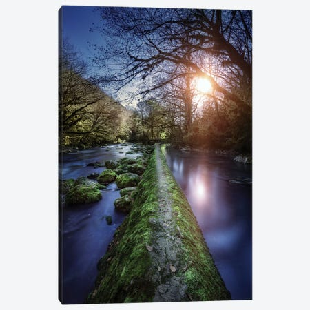 Natural Path Between Two Streams Of River At Sunset, Ritsa Nature Reserve. Canvas Print #TRK2487} by Evgeny Kuklev Art Print