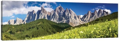 Panoramic View Of Dolomite Alps And Forest, Northern Italy. Canvas Art Print