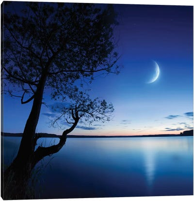 Silhouette Of A Lonely Tree In A Lake Against A Starry Sky And Moon Canvas Art Print