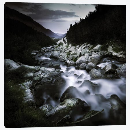 Small River Flowing Over Large Stones In The Mountains Of Pirin National Park, Bulgaria Canvas Print #TRK2539} by Evgeny Kuklev Canvas Art