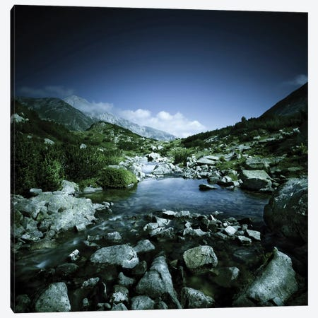 Small River Flowing Through Big Stones In Pirin National Park, Bulgaria Canvas Print #TRK2541} by Evgeny Kuklev Art Print