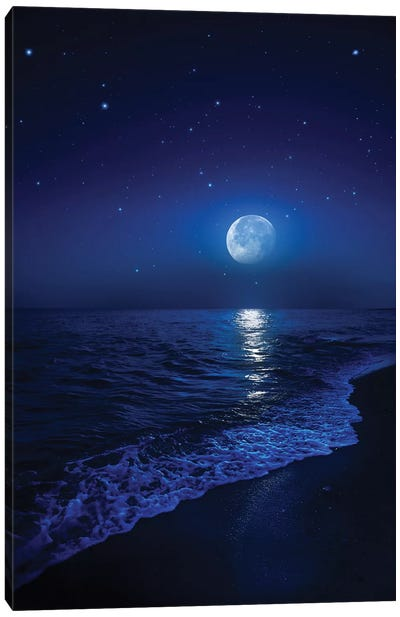 Tranquil Ocean At Night Against Starry Sky And Moon Canvas Art Print