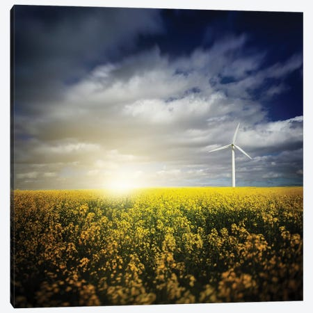 Wind Turbine In A Canola Field Against Cloudy Sky At Sunset, Denmark Canvas Print #TRK2606} by Evgeny Kuklev Art Print