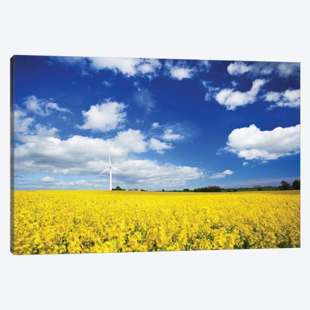 Wind Turbine In A Canola Field Against Cloudy Sky, Denmark I Canvas Print #TRK2607} by Evgeny Kuklev Canvas Art Print