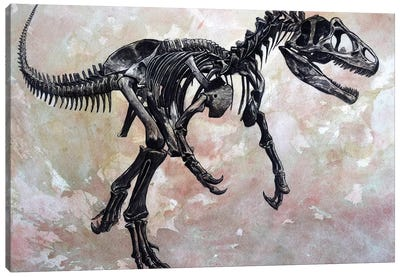 Allosaurus Dinosaur Skeleton Canvas Art Print