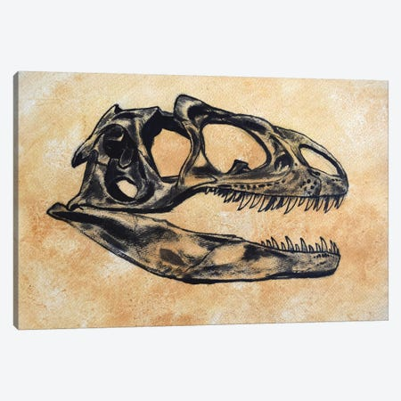 Allosaurus Dinosaur Skull Canvas Print #TRK2613} by Harm Plat Art Print