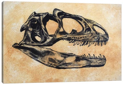 Allosaurus Dinosaur Skull Canvas Art Print