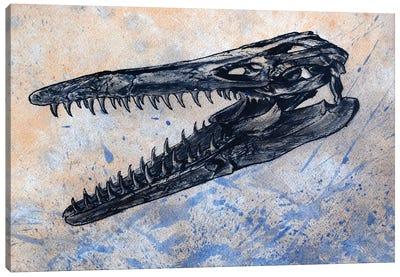 Mosasaurus Dinosaur Skull Canvas Art Print