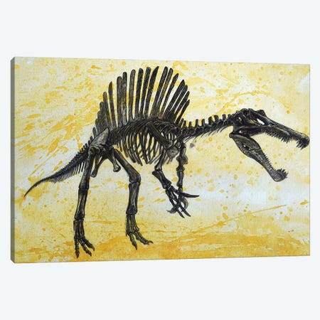Spinosaurus Dinosaur Skeleton Canvas Print #TRK2621} by Harm Plat Canvas Artwork