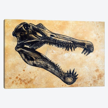 Spinosaurus Dinosaur Skull Canvas Print #TRK2622} by Harm Plat Canvas Wall Art