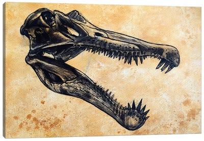Spinosaurus Dinosaur Skull Canvas Art Print