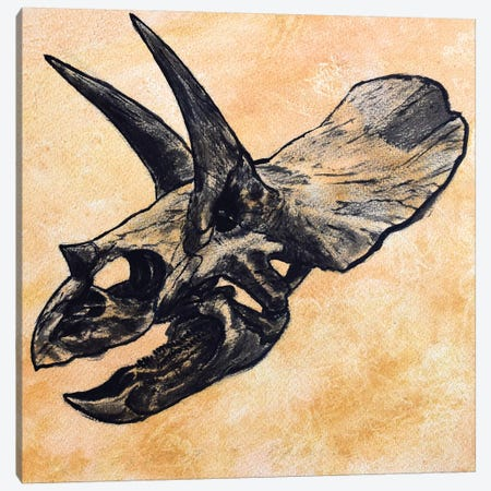 Triceratops Dinosaur Skull Canvas Print #TRK2623} by Harm Plat Canvas Wall Art