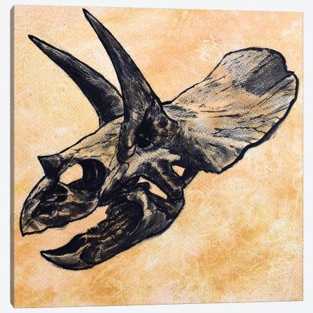 Triceratops Dinosaur Skull Canvas Print #TRK2623} by Harm Plat Canvas Wall Art