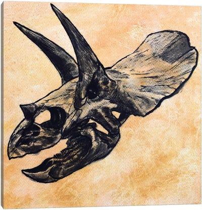 Triceratops Dinosaur Skull Canvas Art Print