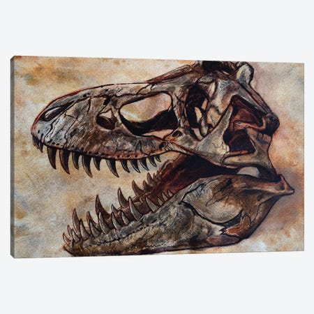 Tyrannosaurus Rex Dinosaur Skull Canvas Print #TRK2625} by Harm Plat Canvas Print