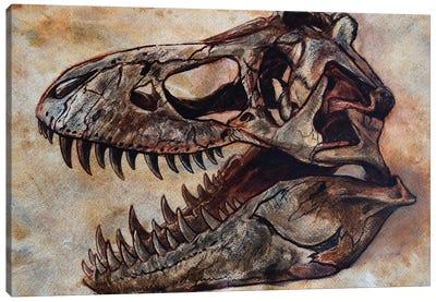 Tyrannosaurus Rex Dinosaur Skull Canvas Art Print