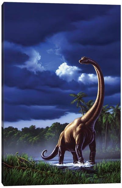 A Startled Brachiosaurus Splashes Through A Swamp Against A Stormy Sky Canvas Art Print