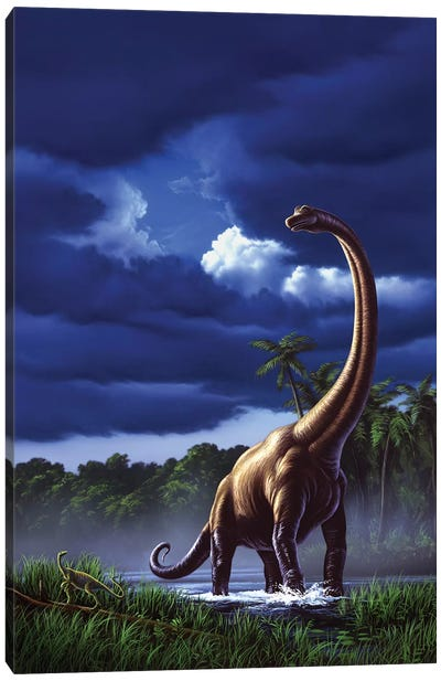 A Startled Brachiosaurus Splashes Through A Swamp Against A Stormy Sky Canvas Art Print