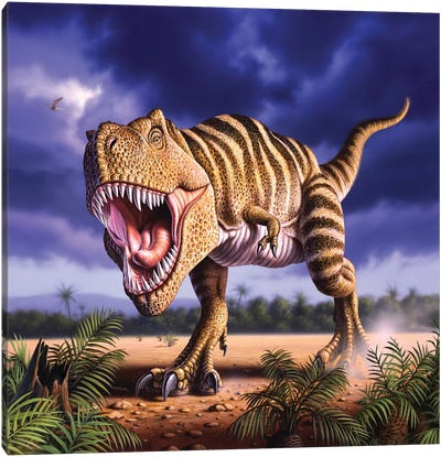 A Tyrannosaurus Rex Attacks, Lit By The Late Afternoon Sun Canvas Art Print