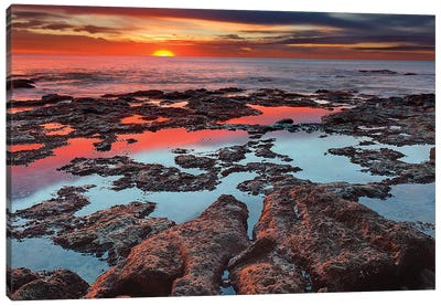 Tidal Pools Reflect The Sunrise Colors During The Autumn Equinox Canvas Art Print