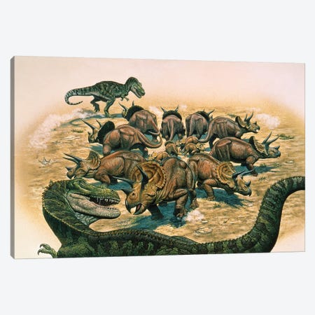 A Herd Of Triceratops Defend Their Territory Against A Pair Of Tyrannosaurus Rex Canvas Print #TRK2661} by Mark Hallett Canvas Artwork