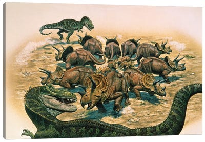 A Herd Of Triceratops Defend Their Territory Against A Pair Of Tyrannosaurus Rex Canvas Art Print