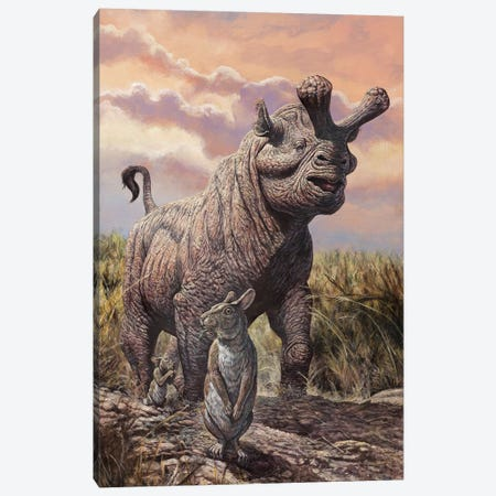 Brontops And Palaeolagus Rabbit Of The Early Miocene Epoch Canvas Print #TRK2666} by Mark Hallett Canvas Print