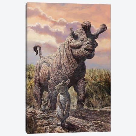 Brontops And Palaeolagus Rabbit Of The Early Miocene Epoch Canvas Print #TRK2666} by Mark Hallett Canvas Print