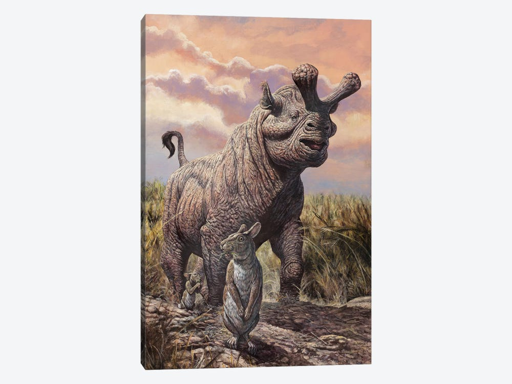 Brontops And Palaeolagus Rabbit Of The Early Miocene Epoch by Mark Hallett 1-piece Canvas Print