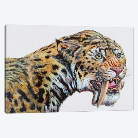 Close-Up Headshot Of Megantereon, Pliocene Epoch 3-Piece Canvas #TRK2668} by Mark Hallett Canvas Wall Art