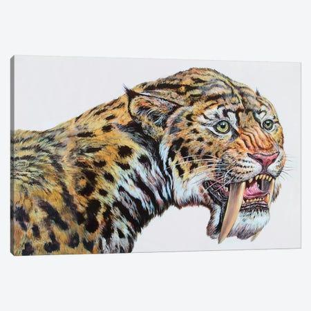 Close-Up Headshot Of Megantereon, Pliocene Epoch Canvas Print #TRK2668} by Mark Hallett Canvas Wall Art