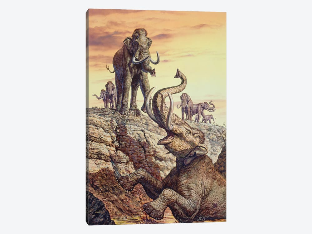 Columbian Mammoth Trapped In A Sinkhole by Mark Hallett 1-piece Canvas Wall Art