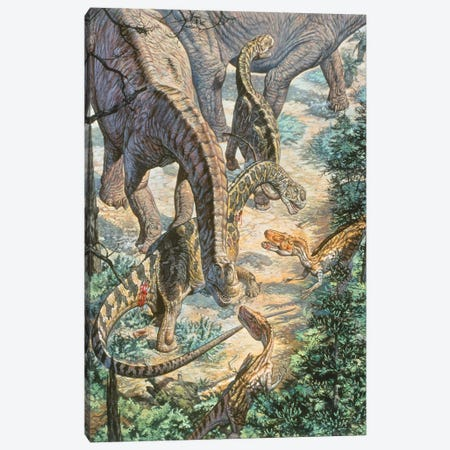 Jobaria Sauropods And Afroventor Raptors Of The Mid-Cretaceous Period Canvas Print #TRK2671} by Mark Hallett Art Print