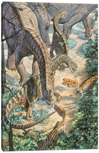 Jobaria Sauropods And Afroventor Raptors Of The Mid-Cretaceous Period Canvas Art Print