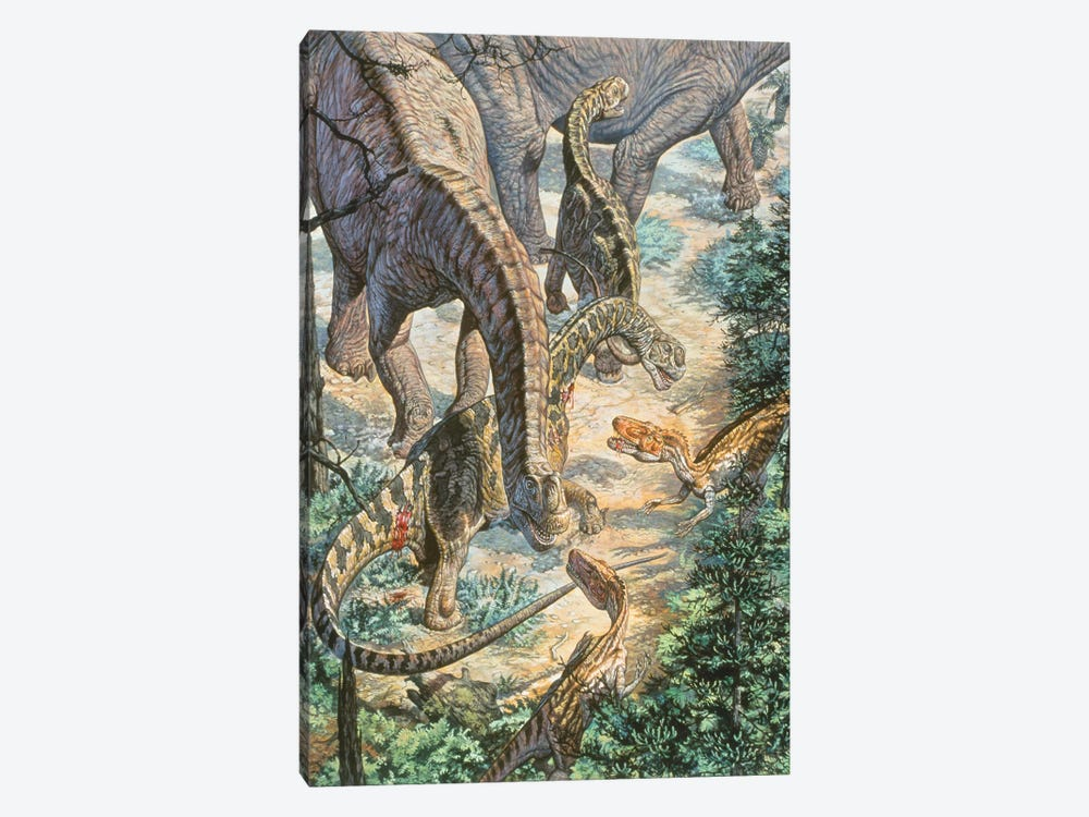 Jobaria Sauropods And Afroventor Raptors Of The Mid-Cretaceous Period by Mark Hallett 1-piece Art Print