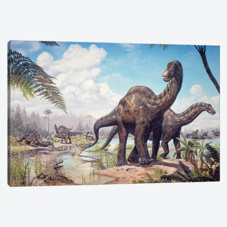 Large Dicraeosaurus Sauropods From The Late Cretaceous Of Africa Canvas Print #TRK2672} by Mark Hallett Canvas Art Print