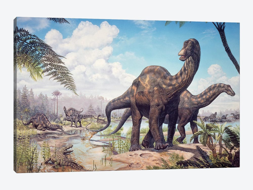 Large Dicraeosaurus Sauropods From The Late Cretaceous Of Africa by Mark Hallett 1-piece Canvas Wall Art