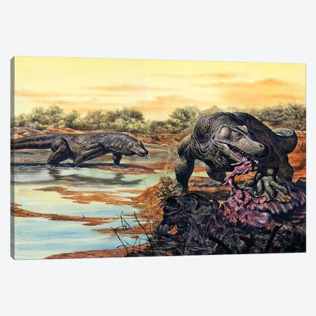 Megalania (Giant Monitor Lizard) Eating His Prey, Pleistocene Epoch Canvas Print #TRK2673} by Mark Hallett Art Print