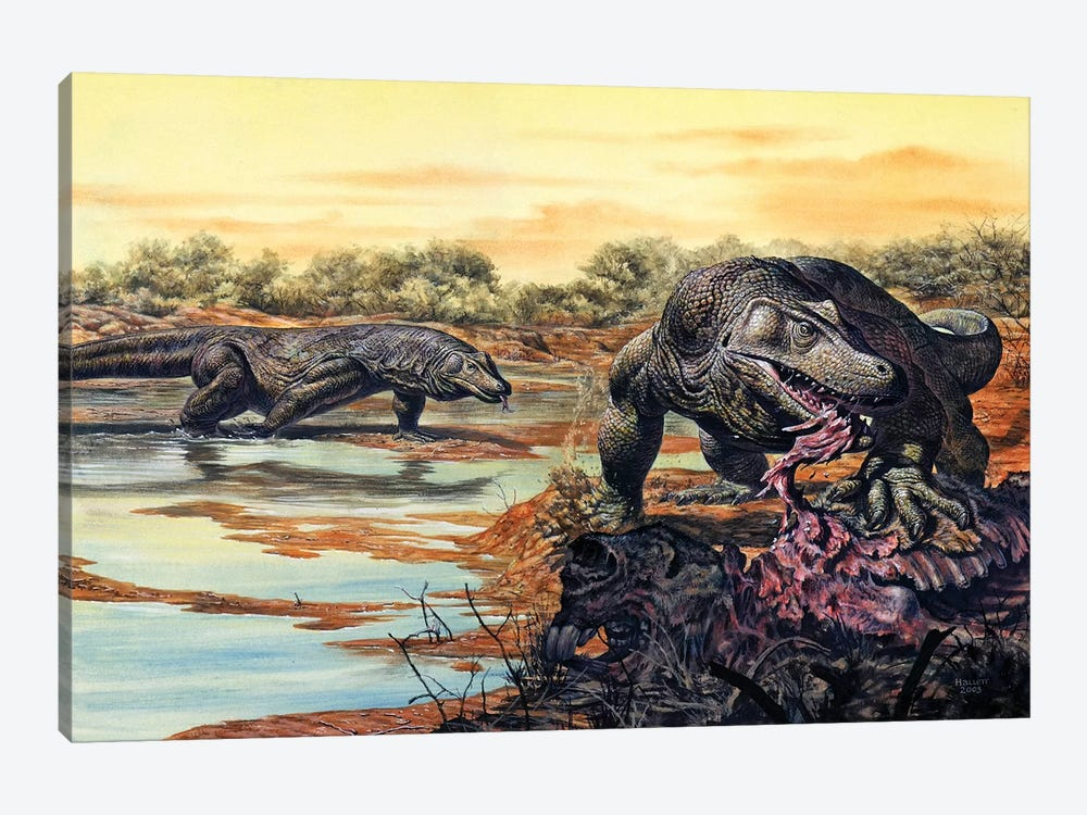 Megalania (Giant Monitor Lizard) Eating His Prey, Pleistocene Epoch 1-piece Canvas Art Print