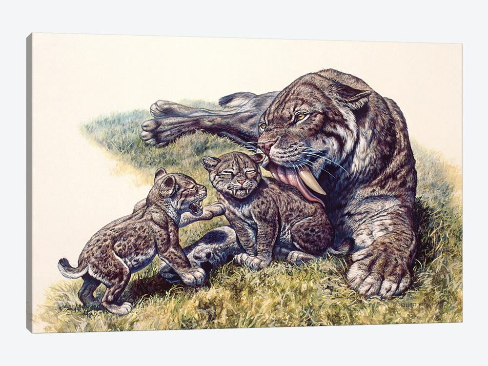 Smilodon Sabertooth Mother And Her Cubs by Mark Hallett 1-piece Canvas Art
