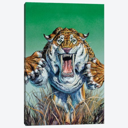 Smilodon Springing Forward At Viewer, Pleistocene Epoch Canvas Print #TRK2679} by Mark Hallett Canvas Print